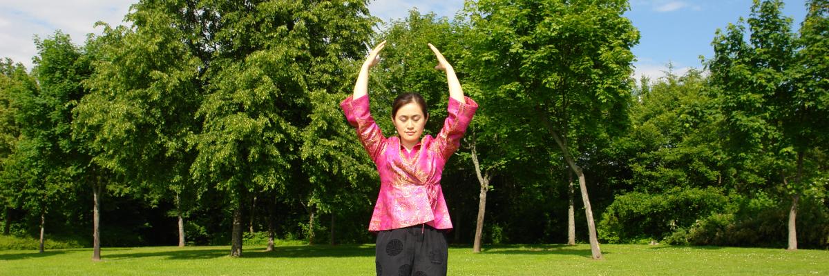 Qigong & Taiji Seminare, Workshops & Ausbildung